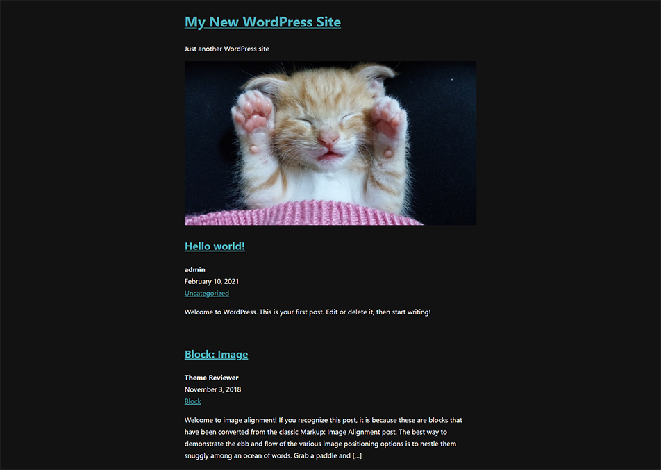 The front of the website with styles applied. The background is dark grey, and the text is white with turquoise links.